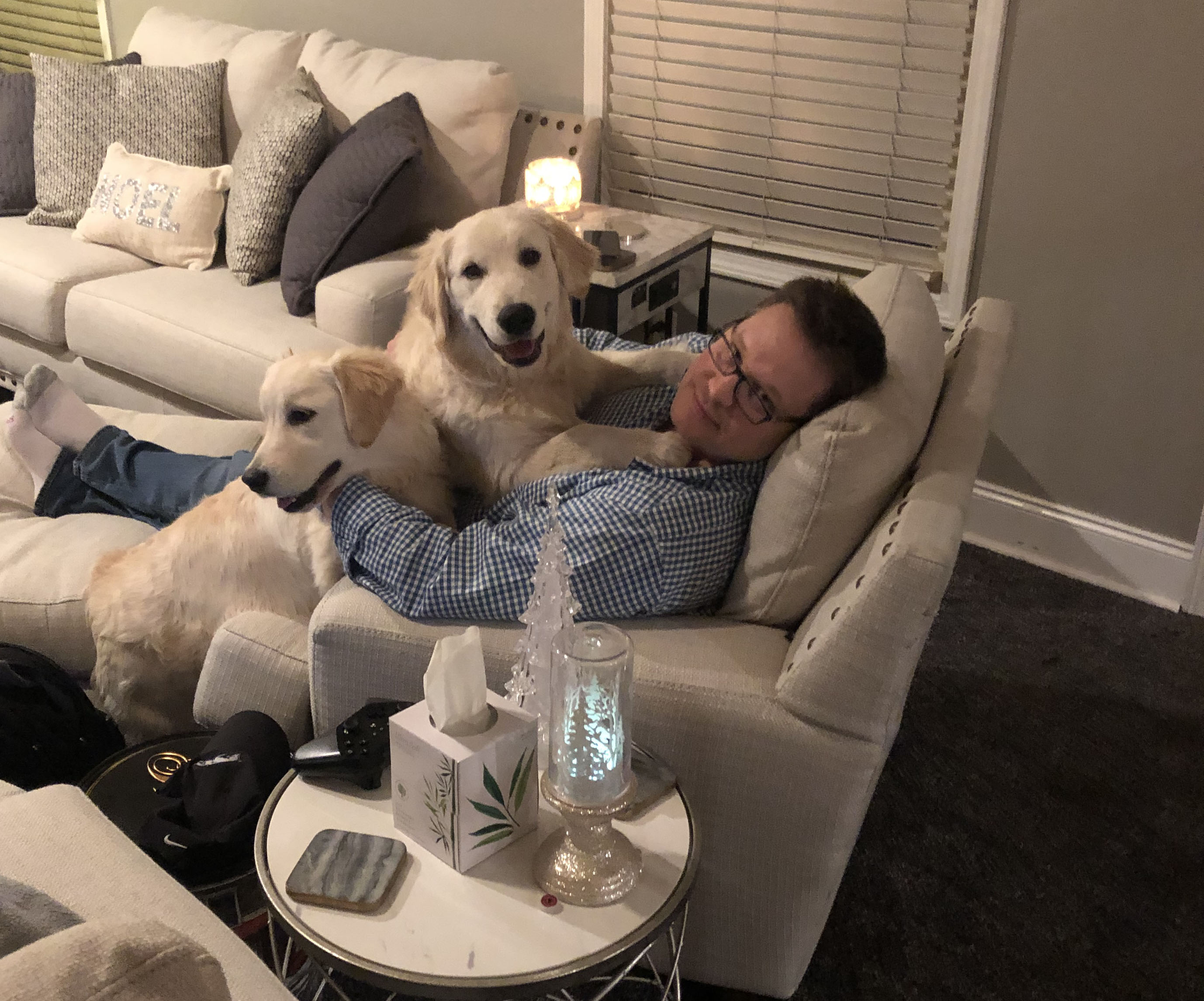 man with two golden retrievers on top of him
